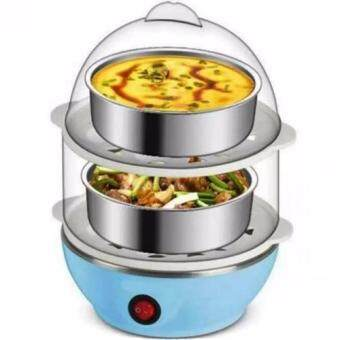 Multi-Function 2-Layer Electric Food and Egg Cooker/ Boilers &Steamer(Blue)