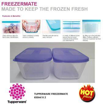 TUPPERWARE Freezermate Junior Food Storage/ Freeze Container 650ml (twin set)