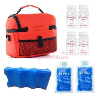 V-Coool Double Layer Cooler Bag Ice Brick Bottle Set