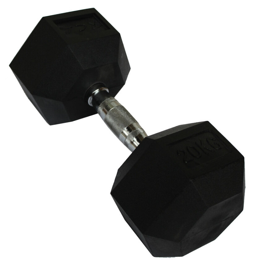 Lazada Dumbbell Set: Buy Exercise & Fitness At Best Price