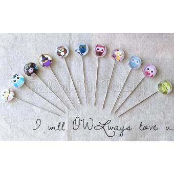 10pcs Hijab Pin Glass Owl Theme