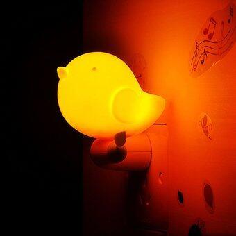 Led baby sensor night light jungle bird toddler wall light lazada malaysia - Birdhouse nightlight ...