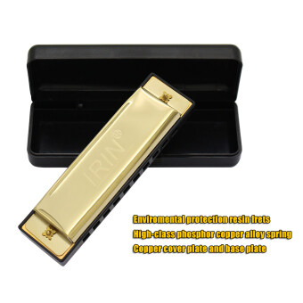 Harga 10 Holes 20 Tone Diatonic Blues Harmonica Key of C with Case forBeginner Children Golden