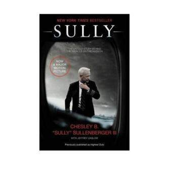 Harga Sully : My Search for What Really Matters