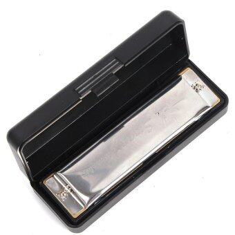 LALANG 10 Holes Harmonica Key of C for Blues Rock Jazz Folk(Silver)