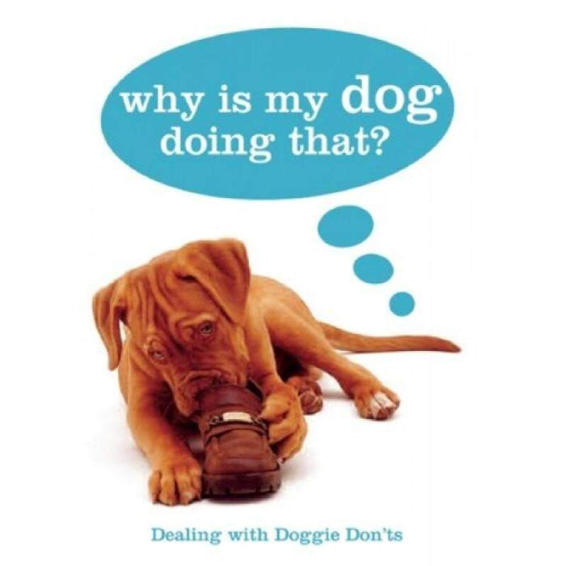 Why Is My Dog Doing That? 9781607100317 Malaysia
