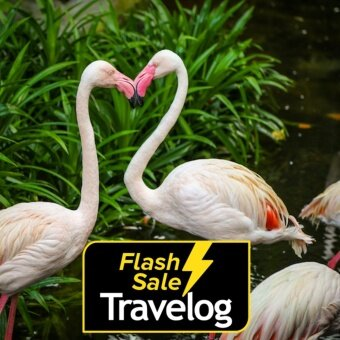 Langkawi: Wildlife Park Admission Ticket (Malaysian - Adult)