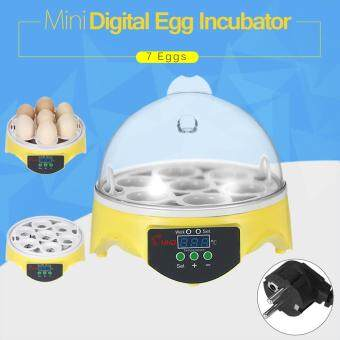 Harga 7 Eggs Mini Digital Egg Incubator Hatcher Transparent Eggs HatchingMachine Automatic Temperature Control for Chicken Duck Bird EggsAC220V