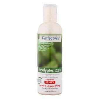 PERFECTAIRE Aroma Essence Solution (Eucalyptus)