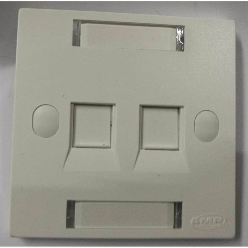 Buy 100 units of AMP Netconnect CAT5e RJ45 Wall Face Plate Socket (Double Port) Malaysia