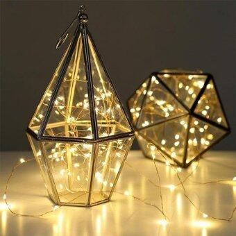 Harga 4M LED Copper Wire Seed Fairy Light (Warm White)