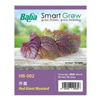 Harga Baba Smart Grow Seeds HB-002 Red Giant Mustard 100SEEDS