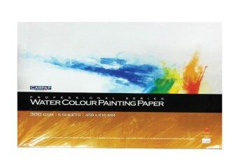 Campap Professional Series Water Colour Painting Paper 300gsm[305mm x 458mm]