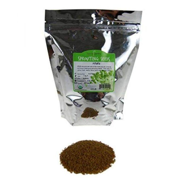 Buy Certified Organic Alfalfa Sprouting Seed- 2.5 Lbs - Handy Pantry Brand - High Sprout Germination- Gardening, Growing Salad Sprouts, Planting, Food Storage & More Malaysia