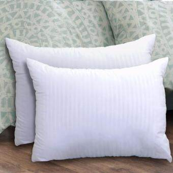 Harga Essina Hollow Fiber Pillow_2pcs/set
