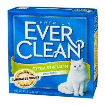 Harga Ever clean Extra Strength Unscented 25lb