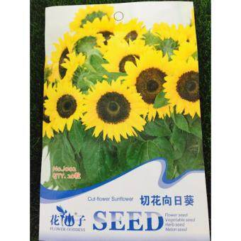 Harga FLOWER GODDESS J002 CUT-FLOWER SUNFLOWER  20SEEDS