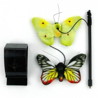 Harga Flying Butterflies Cat toys