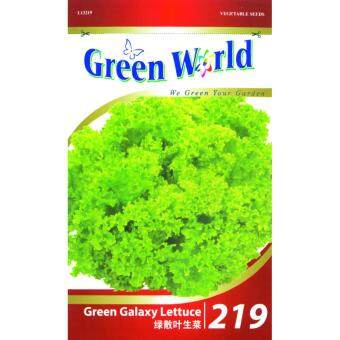 Harga Green World Seeds GW-219 Green Galaxy Lettuce 500 Seeds