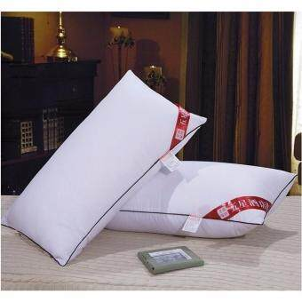 GTE 2pcs Five Star Hotel Bedding Cotton Pillow