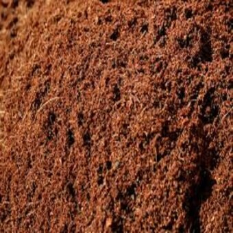 Harga New Local Cocopeat 500gm
