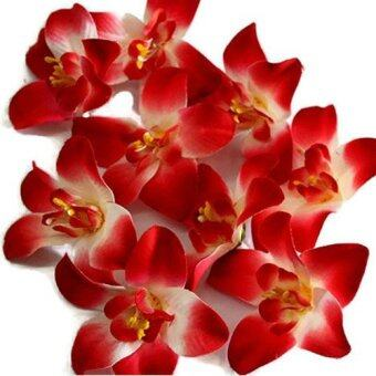Harga 10 pcs Artificial Silk Blooming Orchid-Red