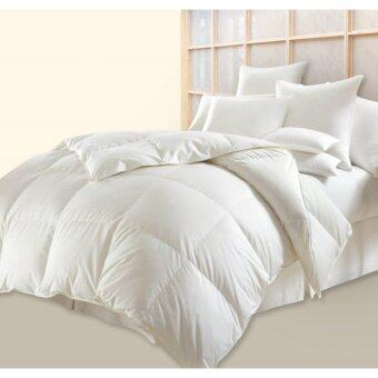 Harga Jean Perry Pluffy Down Quilt-Single