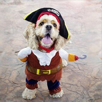 Harga Hanyu Halloween Pirate Style Dog Costumes With Skull Hat Funny Dog Clothing M Multicolor