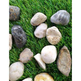 Harga 18 KG LOCAL RIVER PEBBLE STONE GARDEN LANDSCAPE DECORATION