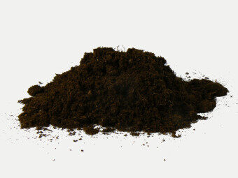 Harga Peat moss import from Holland 500gm