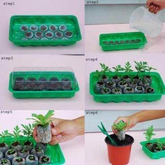 Harga Seeds Nursery Pots Seedling Tray Sprout Plate 10 Holes Plastic Nursery pots Tray Box Gardening