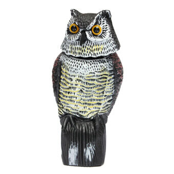 Harga Large Realistic Owl Decoy With Rotating Head Bird Pigeon Crow Scarer Scarecrow