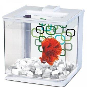 Harga Marina Betta EZ Care Aquarium - White - 2.5 L (0.7 US Gal)