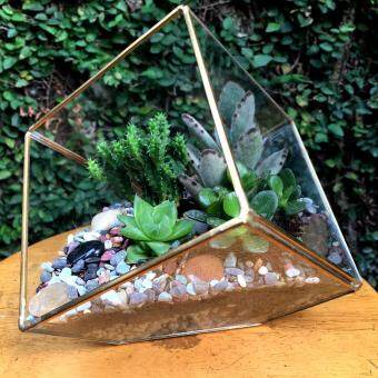 Harga Terrarium Cube Design Large Copper Frame (Gold)