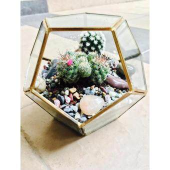 Harga Terrarium Geode Design Medium Copper Frame (Gold)