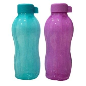 Harga Tupperware Eco Bottle Blue and Purple 750ml ( Set of 2 )