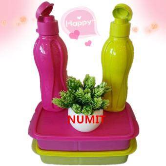 Harga Tupperware FREE SHIPPING Paint My Love 2 x Lunch Box + 2x 500mlFlip Top Eco Bottle Set by NUMIT