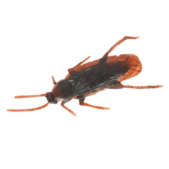 Harga Gracefulvara Simulated Cockroach Shaped Toys Props Scary Bug For Halloween