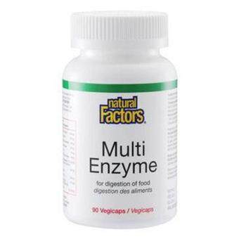 Harga NATURAL FACTORS MULTI ENZYME 90´S