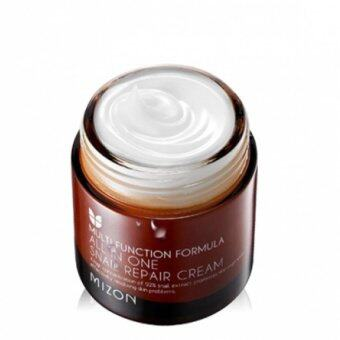 Harga MIZON All In One Snail Repair Cream 75g