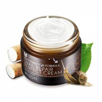 Harga MIZON Snail Repair Perfect Cream 50ml
