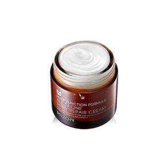 Harga Mizon All in one Snail Repair Cream 75ml