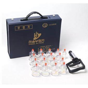 Harga Hansol / Professional cupping therapy equipment set with pumping handle 17 cups (Made in Korea)