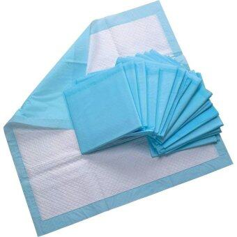 Harga AQ Medicare Disposable Underpad DIS1780 (43cm x 60cm)