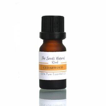 Harga The Seeds Natural - Pure Cedarwood Essential Oil