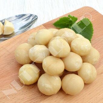 Nutty Lover Premium Raw Macadamia Australia Nut 2 x 500gram (1 kg)