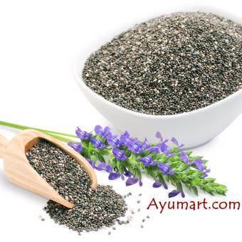 Pure USDA Certified Organic Chia Seeds (Premium Quality Seeds, 500g)