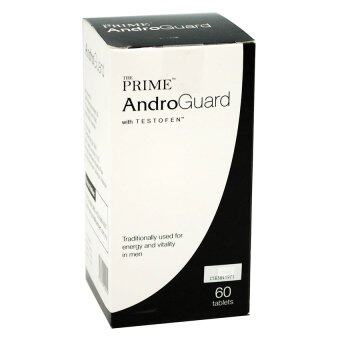 Harga The Prime Androguard 60S
