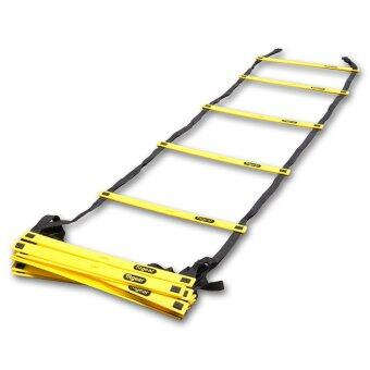 21 Rung 8m Fitgear PRO Speed Ladder