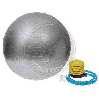Harga Fitness Gym Ball Anti Burst With Pump (65cm) Silver